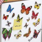 Pillangós hűtőmágnes lapok