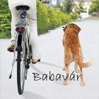 Kerékpárra Kutya Póráz