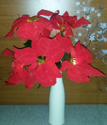 Karácsonyi dekor: Ledes mikulásvirágcsokor vázában