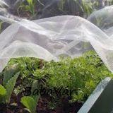 Kertészeti kórokozó háló fólia