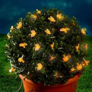 Solár Ledes dekor lámpa méhecske sor